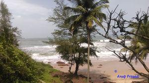 Betul Beach 1/undefined by Tripoto
