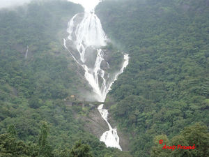 Explore the Unexplored Side of Goa: Three Stunning Waterfalls