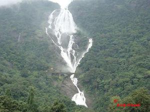 Explore the Unexplored Side of Goa: Three Stunning Waterfalls
