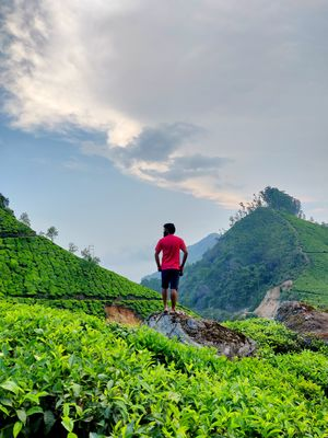 Soaking In The Freshness Of Mother Nature At Munnar, Kerala #colourgreen