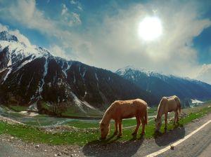 Bedi Sisters roadtripping to Kashmir