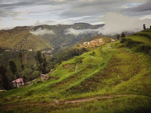 RoadTrip to Heavenly Designed Homestay in between the Hills & Lap of Himalayas – Mukteshwar