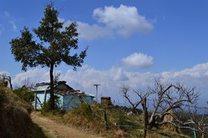 "Kumaon ""The Dev Bhoomi"", one such amazing place Ranikhet!!!"