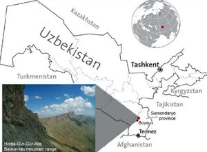 The Land Down-Down-Down Under in Uzbekistan: The Dark Star
