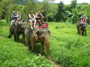 Ban Kwan Chang Elephant Camp Ko Chang Trat Thailand 1/undefined by Tripoto