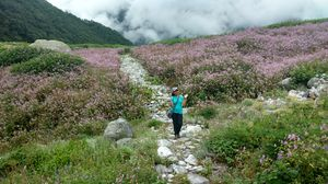 Love for Himalayas: Trek to Valley of Flowers