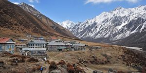 10 Reasons to Go For Langtang Valley Trek - Epic Adventures