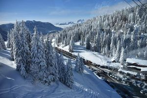 Glacier 3000, Gstaad and Montreux - Romance in the air!