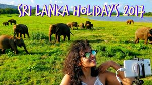 Things To Do in Sri Lanka - Minneriya National Park