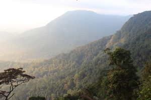 Agumbe-The Land of King Cobras!!!