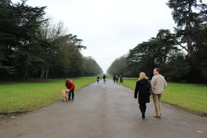 Cirencester Park 1/1 by Tripoto