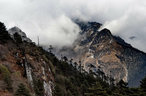 Are you thinking of spending few days in the lap of Himalayas? Tawang may be your next Destination..