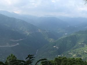Timber Trail - An Ideal Getaway from Chandigarh..