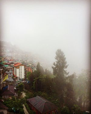My whimsical Journey Across Sikkim.