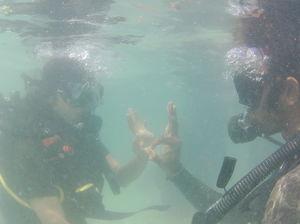Scuba Diving at Havelock! #BestDive #AdventureActivity #ParadiseFound