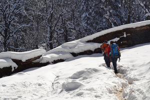 Hike to kedarkantha top - Winter trek #2017