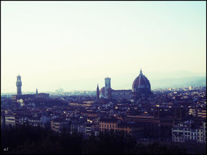 Florence 1/undefined by Tripoto