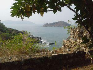A Sea full of Dolphins -Karwar (Karnataka) and Paloem Beach, Conacona, Goa