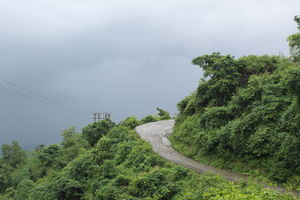 Rajpur Road 1/undefined by Tripoto