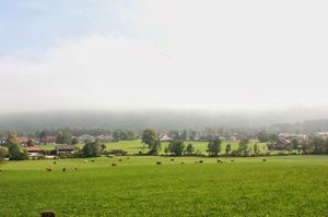 Hirschberg 1/undefined by Tripoto