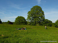 Hampstead Heath 1/undefined by Tripoto