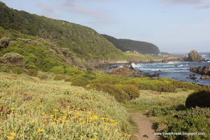SA road trip (2): Garden Route and Cape Town