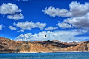 tis the season of ladakh.