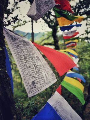 3 Musketeers on a Foreign Land, Explore Bhutan: A Secret Getaway to Happiness(5N/6D)