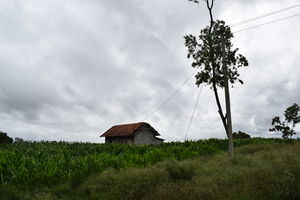 Road Trip to Bylakuppe, Coorg        #offbeatplace