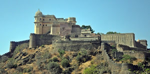 Life Through Aby's Lens: Kumbhalgarh : Second largest wall in the world