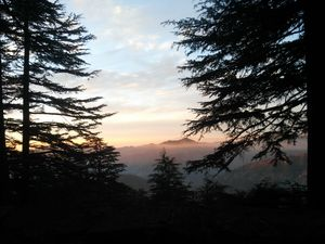 How to plan your weekend getaway to Chail, Himachal Pradesh
