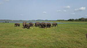 Beautiful Sri Lanka !!