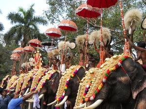 Kerala's Pride - Thrissur Pooram