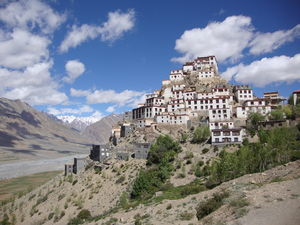 The Ripe of Raw Spiti
