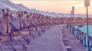 Rann Utsav: What Not To Miss When on The White Desert Rann at Kutch