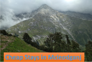 5 Cheap Stay Places for Solo Travelers in Mcleodganj