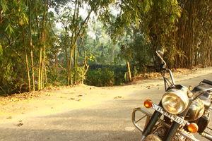 Kamalabari Satra 1/undefined by Tripoto