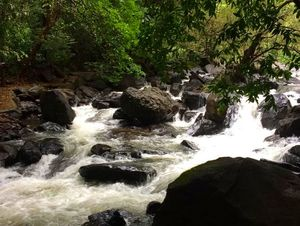 Day long itinerary from Goa to Dudhsagar falls