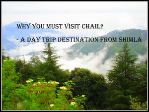 Why you must visit Chail? - A Day trip destination from Shimla