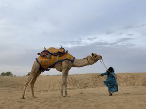 Top Things to do in Jaisalmer, Rajasthan. · MAP CAMERA TRAVEL