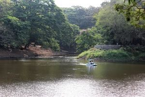 Spend A Day Camping Inside A National Park In The Heart Of Mumbai