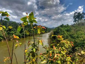 Weekend getaway drive - Bangalore - Mullayangiri - Kudremukh - Mangalore road forest - Bangalore