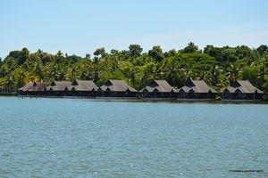 Kerala Diaries--Tale of Eight Lakes.
