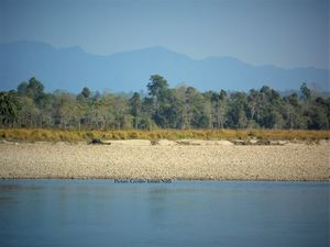 Nameri National Park And Forest Reserve 1/undefined by Tripoto