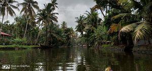 Puttu-kadala curry: A Kerala backpacking affair
