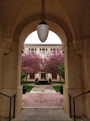 @jetairways @tripotocommunity #BestTravelPictures #Stanford #California