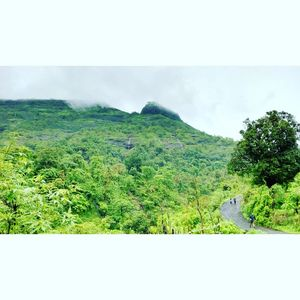 Sondewadi: A Vantage Point To All That Nature Can Offer!