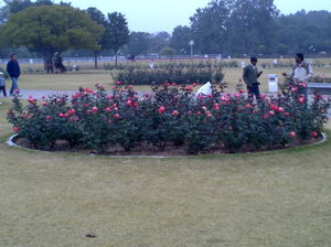 Chandigarh Rose Garden 1/5 by Tripoto