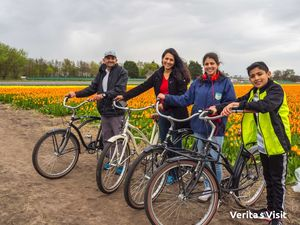 Tulip Field Bike Tour Holland