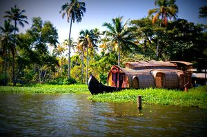 Why Kerala is the Best Honeymoon Destination!